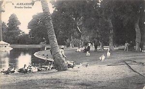 POSTCARD-EGYPT-ALEXANDRIE-Nouzha-Garden