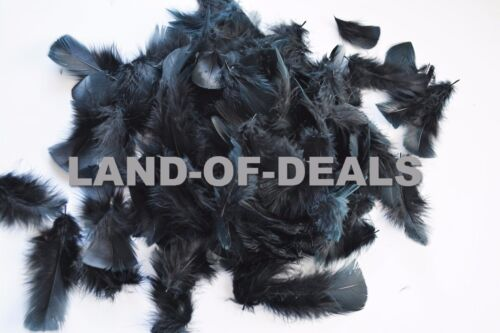 400 Black turkey feathers loose small feathers plumage feather bulk 2 oz