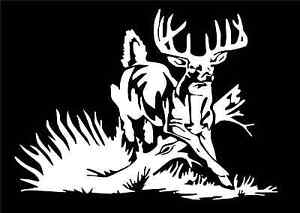Whitetail Deer Decal Buck Car Truck Window Vinyl Hunting Sticker - Rear window hunting decals for truckstruck decals stickers rear window graphics legendary whitetails
