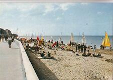 BF31595 la plage et les voiliers   luc sur mer france front/back image