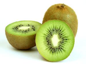 Fruit Seeds - Kiwi Fruit Seeds- 25 Nos - Green Kiwi Fruit Seeds