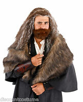 The Hobbit An Unexpected Journey Thorin Oakenshield Wig/beard Costume Accessory