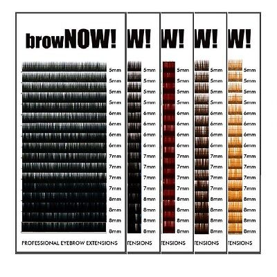 browNOW! Individual Eyebrow Extensions - 0.10 - Mixed Length Trays