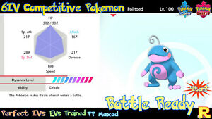 6IV-COMPETITIVE-POLITOED-SHINY-ULTRA-or-NOT-SWORD-amp-SHIELD