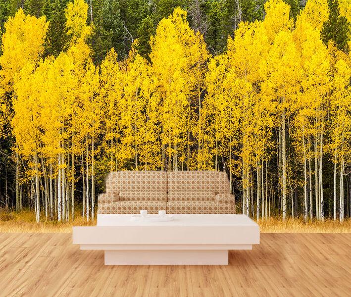 3D Yellow Forest Tree Art 8027 Wall Paper Wall Print Decal Wall AJ WALLPAPER CA