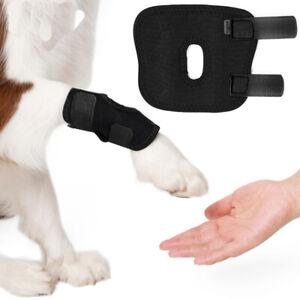 Small-Dog-GAMBA-TUTORE-SUPPORTO-PER-GINOCCHIO-Hock-GIUNTO-POSTERIORE-terapeutico-Pet-Della-Gamba