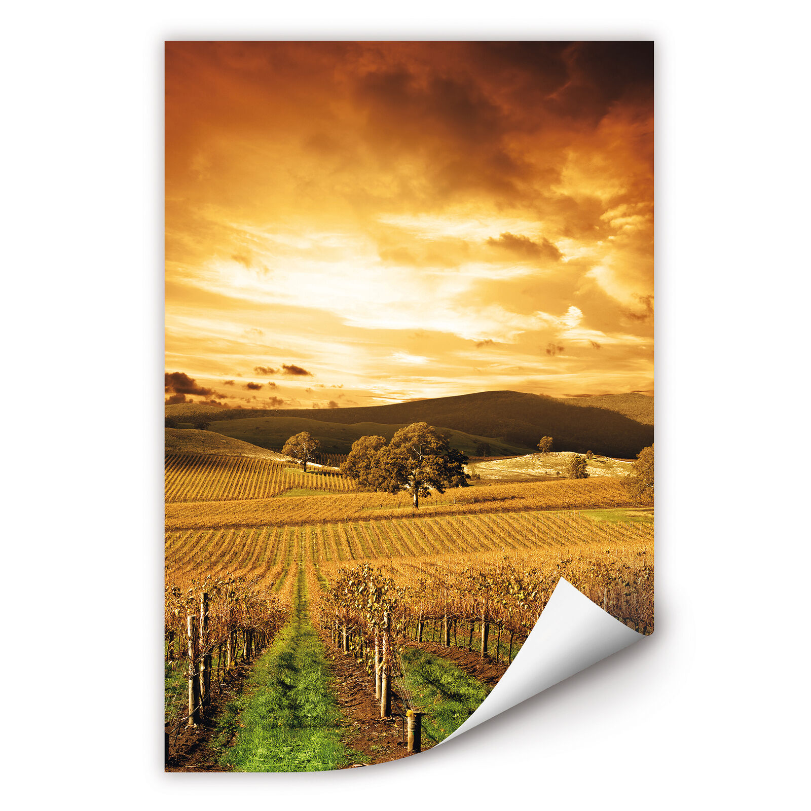 Wallprint Wallprint W - Tirol im Herbst Orange