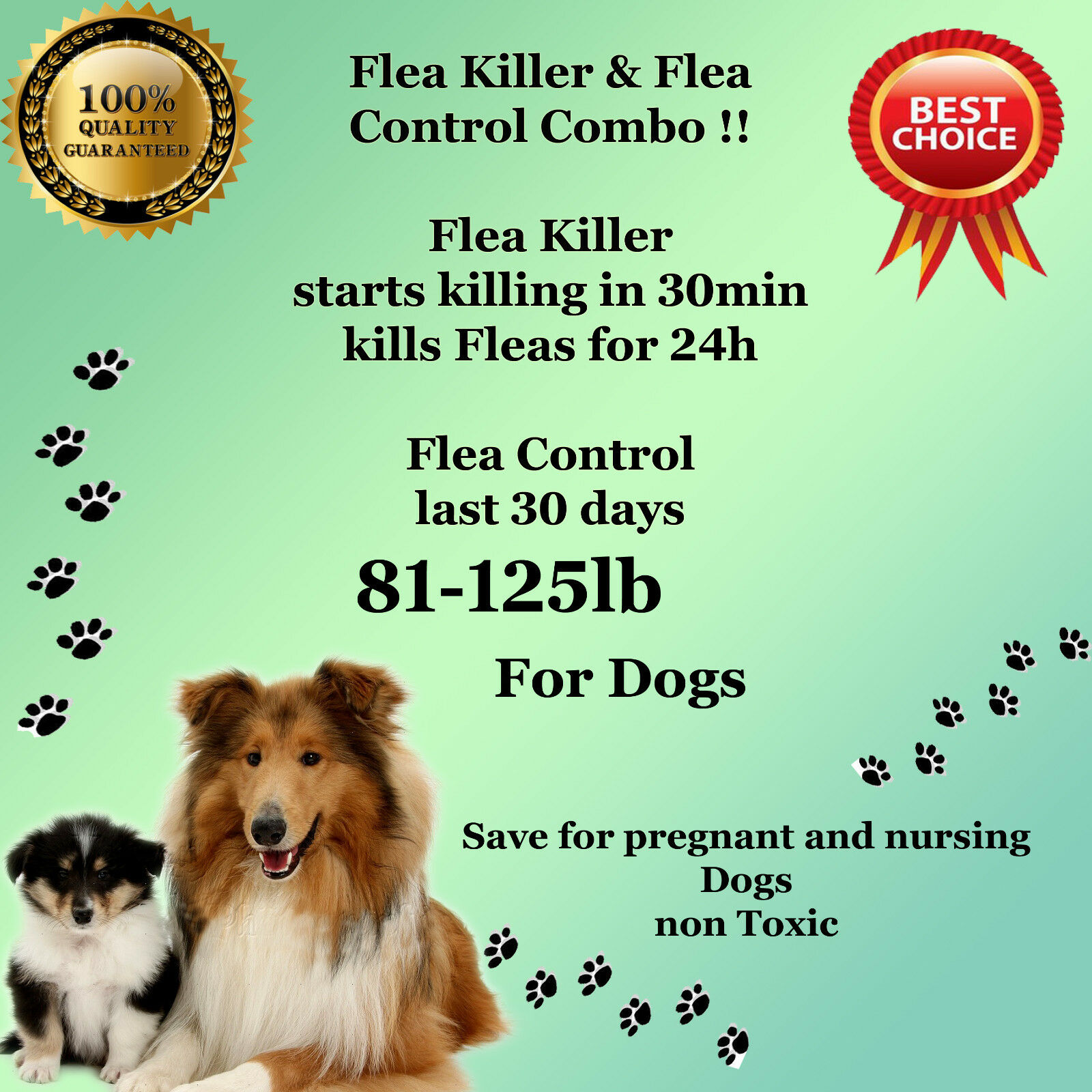 K9 Instant Flea Killer and Control COMBO 1212 Large Dogs 81125lb prevention