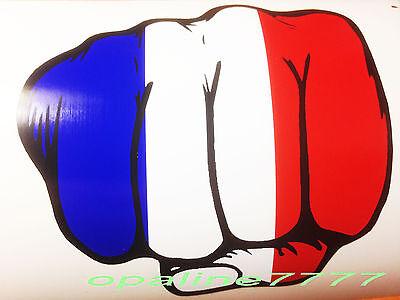 Decal Sticker Fist French Flag Motorbike Helmet Yamaha Honda Kawasaki