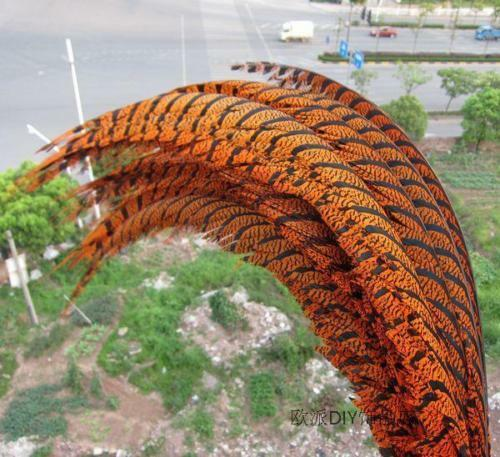10-100 PCS 32-36 inch 80-90 cm Lady Amherst Pheasant feather decoration