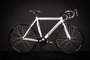 28-034-Zoll-Alu-Rennrad-Single-Speed-GIORDANO-Race-Bike-Fixi-Fahrrad-Rh-56cm-weiss