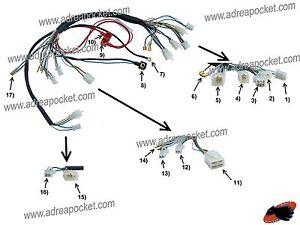 faisceau electrique atv    quad chinois 50  u00e0 125cc