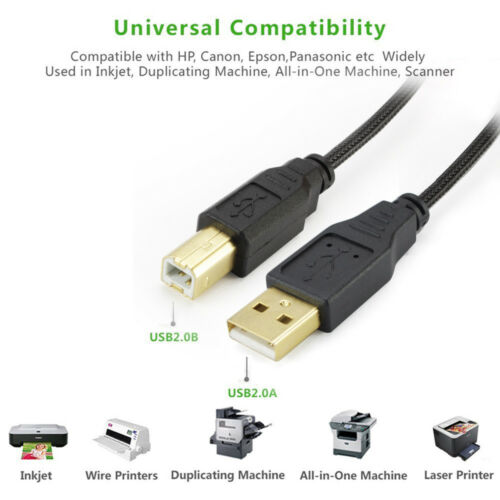 Gold 15ft USB 2.0 Type A Male to B Printer Cable HP Dell BrotherCanon EpsonXerox