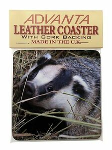 ABA-1P Badger in Straw Picture Placemats in Gift Box