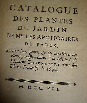 Les Plantes du Père Hébert - Gilles Nadin