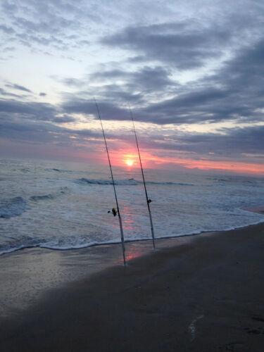 Madames CRX 6 Surf//pier fishing Rigs: Pompano vivaneaux etc.