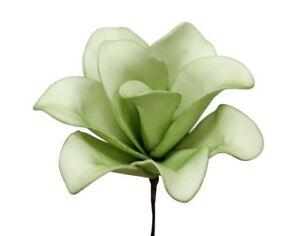 38429-FLOR-FLOR-DE-LA-ESPUMA-RUMBA-flor-de-la-espuma-L-18cm-verde-claro