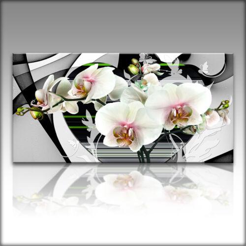 LEINWAND KUNSTDRUCK XXL Bilder Modern Blumen 4179 VnArtist