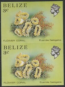 Belize (1752) - 1984 Marine Life 3c IMPERF PAIR unmounted mint