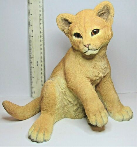 - LION Cub Country Artists Natural World INNOCENCE Large Sitting