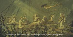 Mermaid Shipwreck