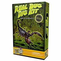 Discover With Dr. Cool Real Insect Excavation Science Kit , New, Free Shipping on sale