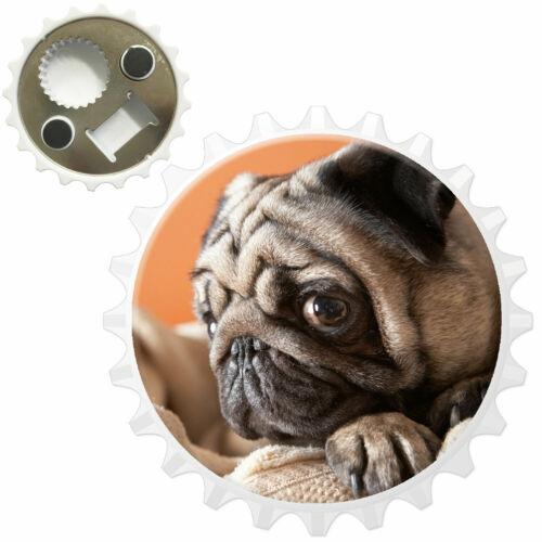 Pug Sat On Towel Bottle Opener Fridge Magnet