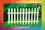 D 100x200 20 stuck Sibirische Lärche  Zaunlatten Zaunelemente  holzzaun