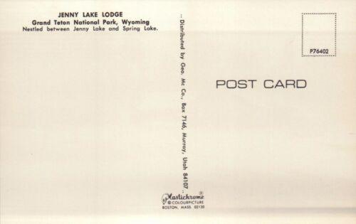 Jenny Lake Lodge Grand Teton National Park Wyoming Volkswagen Bus /& Car Postcard
