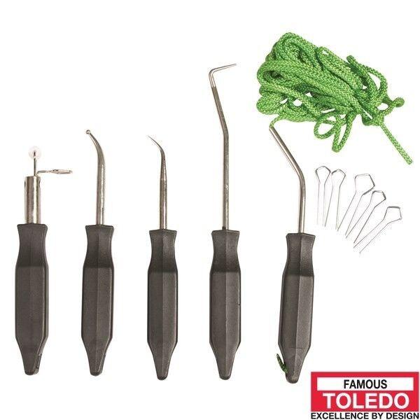 TOLEDO Windscreen InsGrößetion Kit 313308