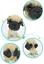Resin-Funny-Pug-Dog-Bobbing-Bobble-Head-Doll-Toy-Car-Home-Desk-Decor-Funny-Gift thumbnail 6