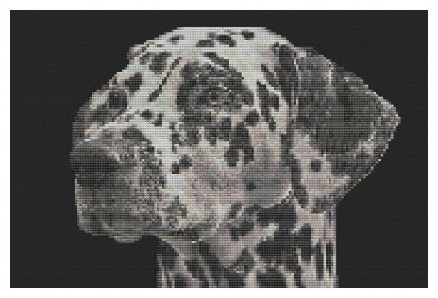 Dalmatian Dog Cross Stitch Kit by Florashell