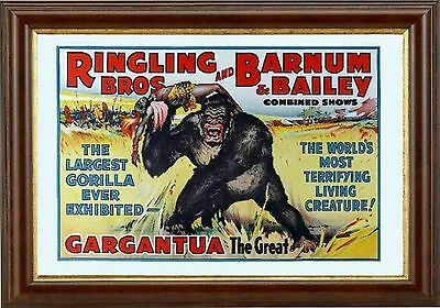 MAGNET Circus Poster PHOTO Magnet Ringling Bros and Barnum and Bailey Lion Tiger