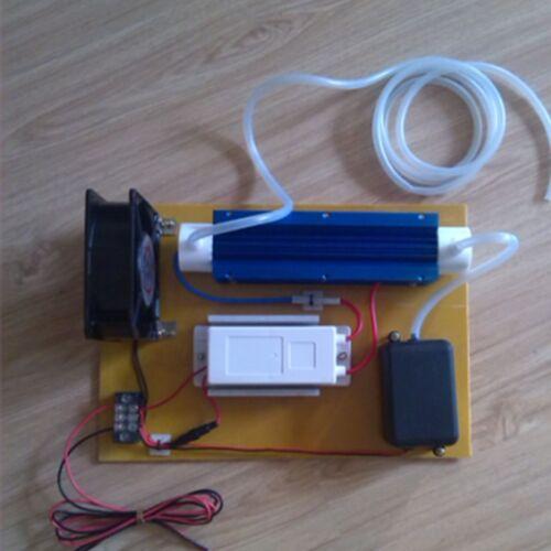 110 V 10g//h efficace de traitement de l/'eau générateur d/'ozone ozone Désinfection