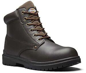 Dickies Antrim Work Boots - Steel Toe