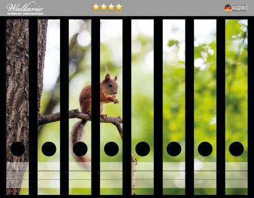 Eichhörnchen auf Ast Wald Wallario Ordnerrücken selbstklebend 8 schmale Ordner