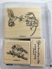 Stampin Up SPRING SONG wm Stamp Set FRIENDSHIP Saying Humming Bird Robin Flower