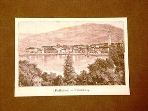 Incisione-del-1891-Raro-panorama-di-Pallanza-Piemonte