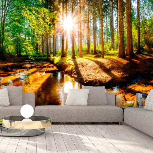 Unique sun and forest landscape nature wallpaper murals for any wall