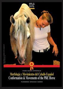 Morfología y Movimientos del Caballo Español