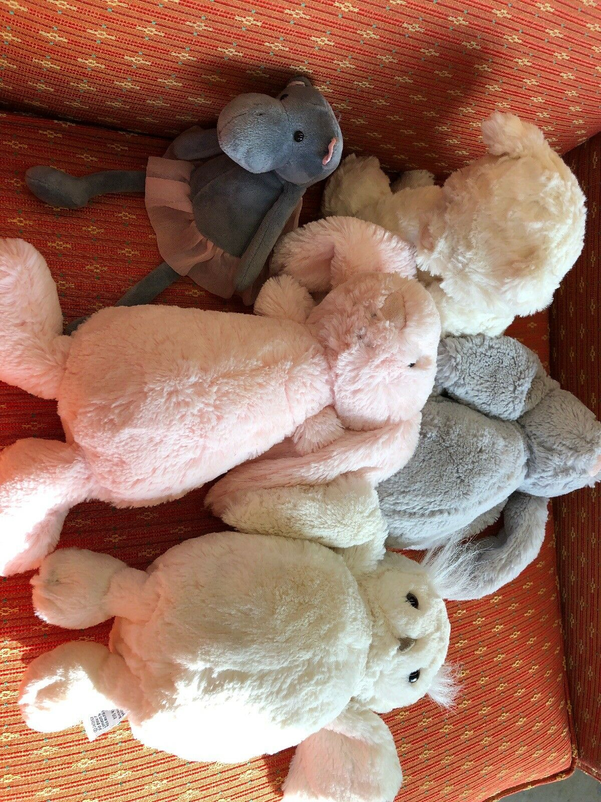 Gato gelatinoso, quinta zona forestal peluda, tímido conejo mantequilla búho, búho, hipopótamo.