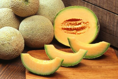 20 Seeds Iroquois Cantaloupe Sweet Early Producer Heirloom Untreated
