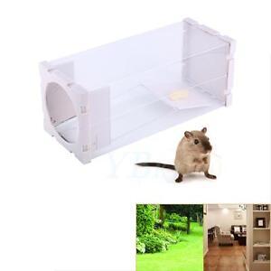 Blanc-Sans-Cruaute-Rat-Piege-Cage-Animal-Nuisible-Rongeurs-Souris-Souris-Appat-CATCH-CAPTURE-BOX