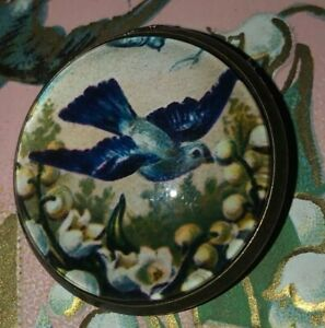 Beautiful-Victorian-Graphics-Blue-Bird-Lily-Valley-Flowers-Domed-Glass-Button