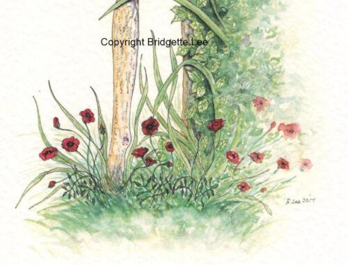 Whippet Levriero LUCHER I.G DOG acquerello//pittura a inchiostro da Bridgette Lee.