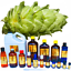 3ml-Essential-Oils-Many-Different-Oils-To-Choose-From-Buy-3-Get-1-Free thumbnail 52