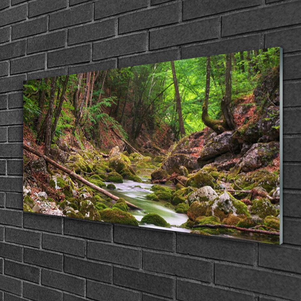 Tableau sur verre verre verre Image Impression 100x50 Nature Forêt 68b738