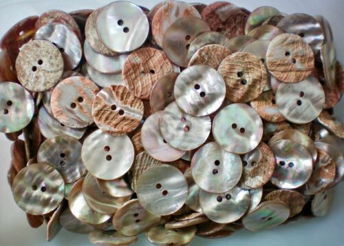 20mm 23mm Warm Pearlescent Ivory Shell Agoya Terracotta Natural Buttons W120A-Bx