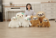 UK-Cute-Giant-Sloth-Stuffed-Plush-Toys-Pillow-Cushion-Gifts-Animal-Doll-Soft thumbnail 9