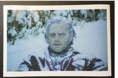 The Shining Jack Frozen Poster Kubrick Movie Scene Horror Halloween CHOOSE SIZE!